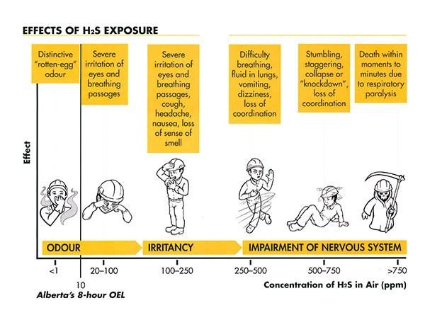 Biểu hiện khi nhiễm độc khí H2S