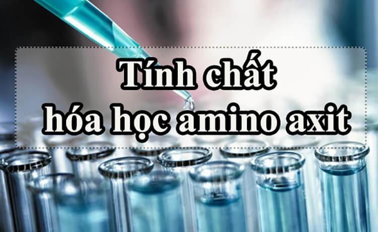 tính chất hóa học của amoni axit