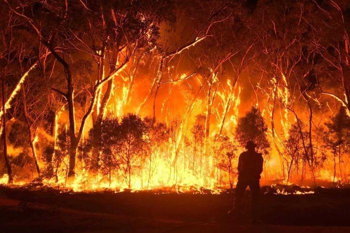 Tình trạng ô nhiễm nhiệt gây cháy rừng