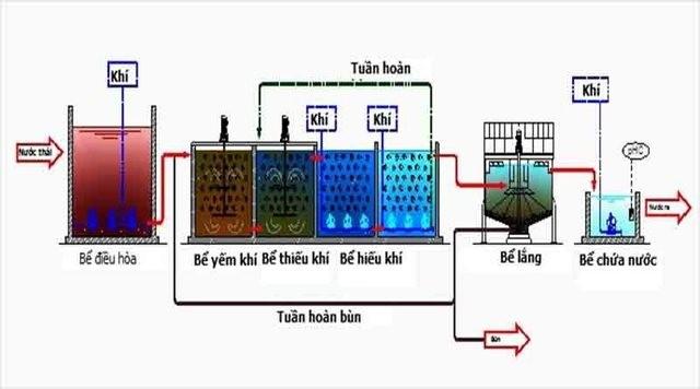 Nguyên lý hoạt động của bể thiếu khí