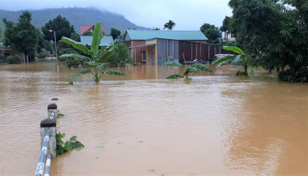 Mưa lớn khuấy động lớp trầm tích dưới đáy sông hồ