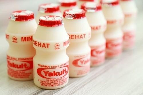 Sữa lên men có chứa axit benzoic