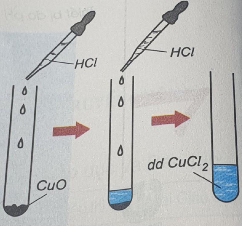 HCl tác dụng phản ứng với oxit bazơ