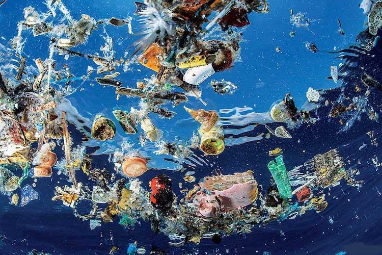 Rác thải nhựa trong nước