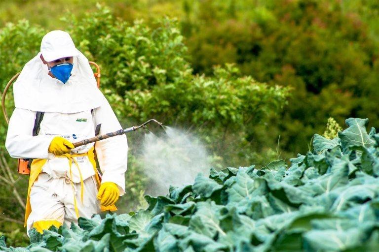 Asen có trong nhiều loại thuốc trừ sâu