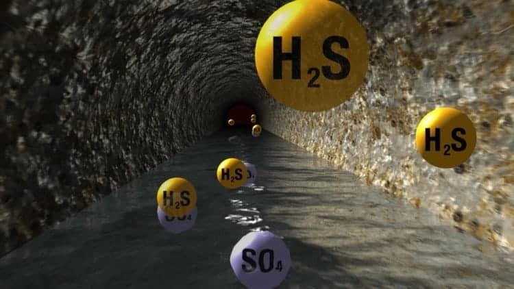 Khí H2S rất độc dù với nồng độ thấp