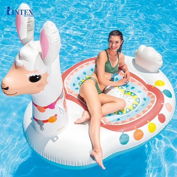 phao bơi người lớnn hình lạc đà