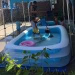 Bể bơi phao cho bé 2 tầng trong suốt 2m62 chữ nhật INTEX 56483