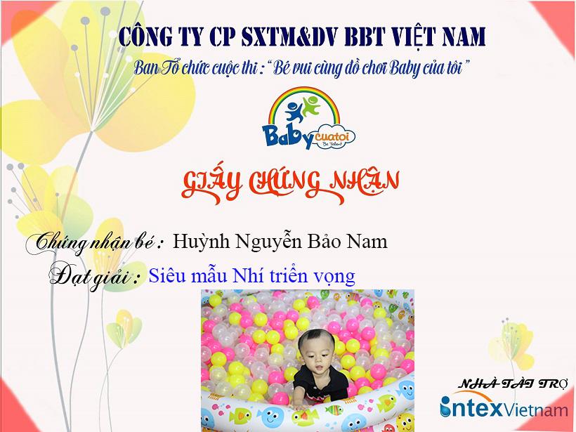 Hu-nh Nguy-n B-o Nam