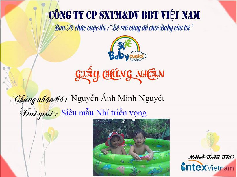 Nguy-n Ánh Minh Nguy-t