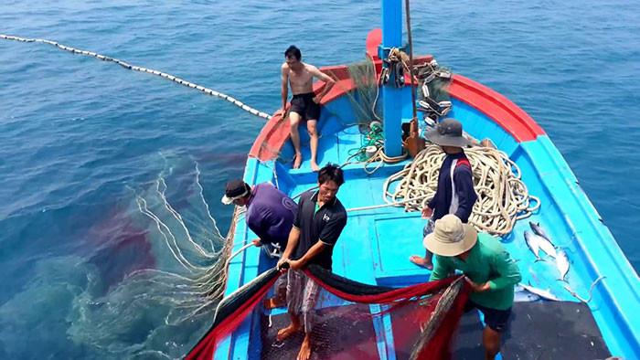 Đánh bắt cá khô