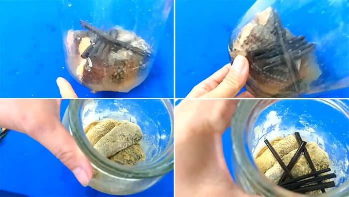 cách làm mắm cá lóc