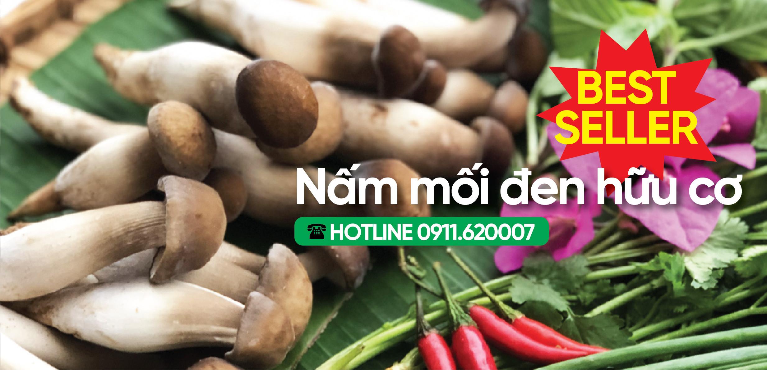 Nấm mối đen hữu cơ Bakafood