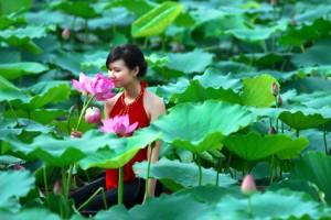Địa điểm chụp ảnh đẹp sen Tây Hồ ở Hà Nội