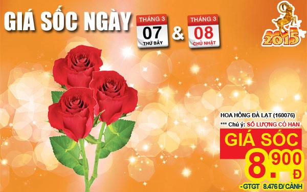 07-to-08-02_website_everyday_hot_deal_HOA-HONG