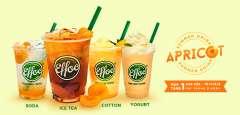Effoc khuyến mãi mua 1 tặng 1 Summer Drink Apricot