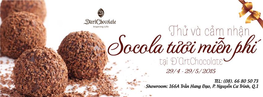 Ăn thử miễn phí các loại sô cô la tươi tại D'Art Chocolate