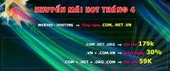 Tên Miền Quốc Tế Tại PaVietNam Giá 179k (Giảm 30%)