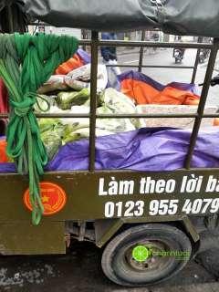 Địa chỉ mua cá vược chết rết ủng hộ người dân Thái Bình