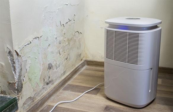 So sánh máy lọc không khí và máy hút ẩm   Bạn hợp với loại nào ?