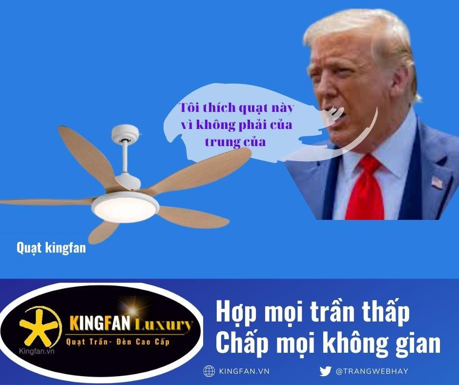 quat-tran-5-canh-kingfan969