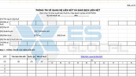 Hướng dẫn lập mẫu 01 kèm theo Nghị định 20 kèm theo tờ khai thuế số 03/TNDN