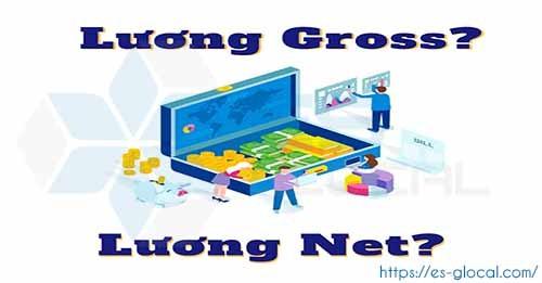 Lương NET và lương Gross là gì? So sánh sự khác nhau giữa Lương NET và Lương GROSS