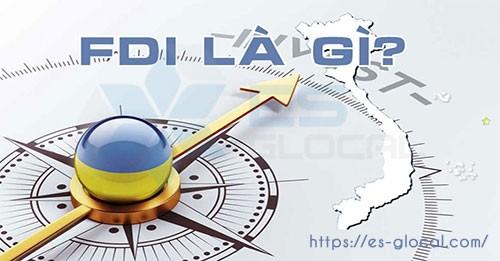 Doanh nghiệp FDI là gì? Cẩm nang về Đầu tư trực tiếp nước ngoài