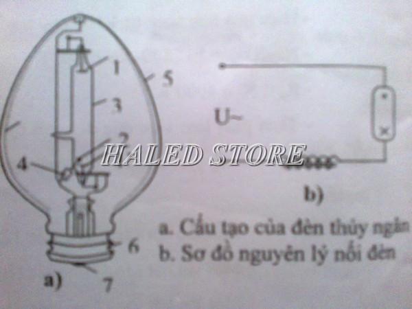 Sơ đồ cấu tạo của đèn cao áp thủy ngân