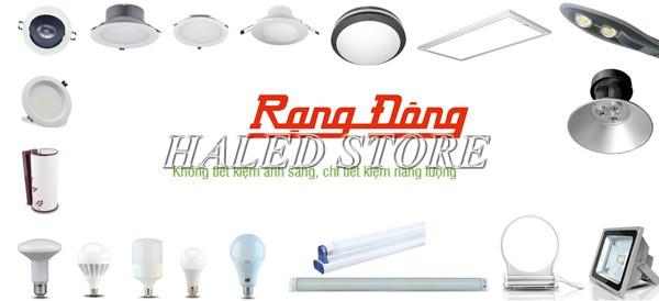 Cửa hàng bán đèn LED nhà xưởng Rạng Đông