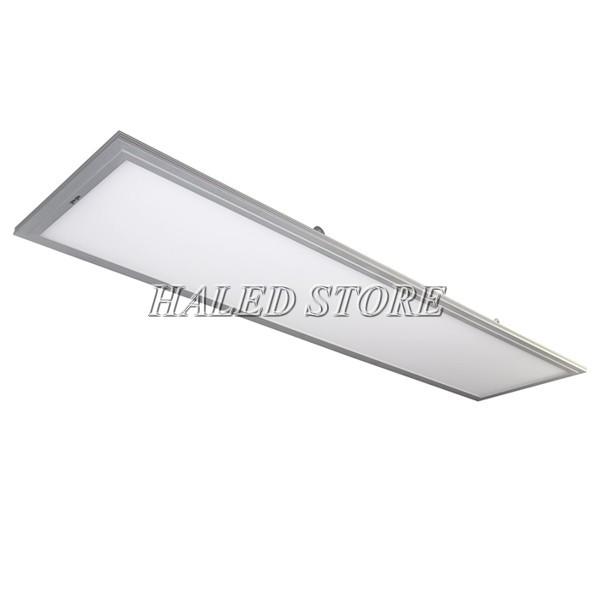 Đèn phòng sạch Rạng Đông D P01 30x120/50W