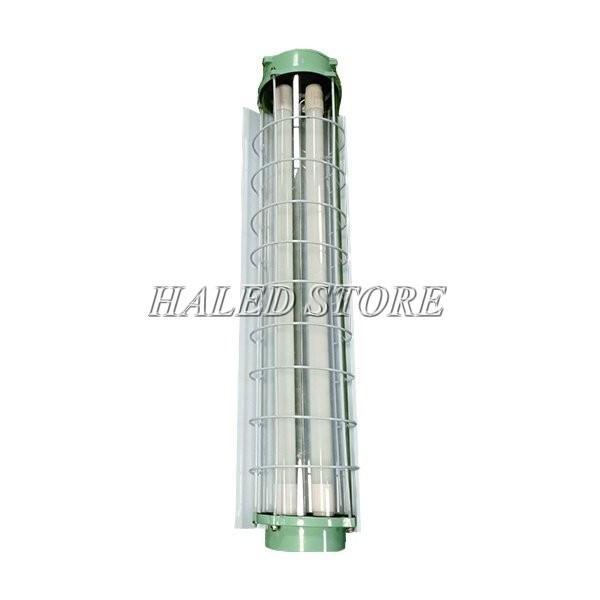 Kiểu dáng của đèn tuýp LED chống cháy nổ HLDAEP TL3-2x9