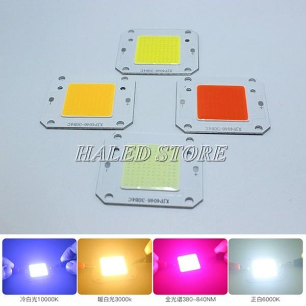 Chip LED 12V
