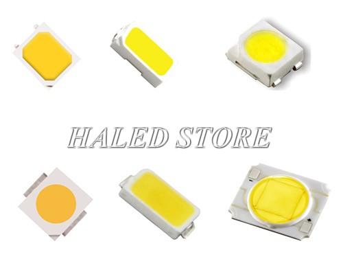 Chip LED của đèn