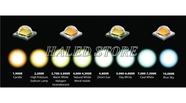 Màu sắc ánh sáng chip LED