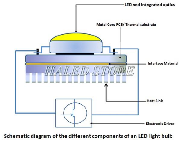 Cấu tạo chip của đèn LED cao áp
