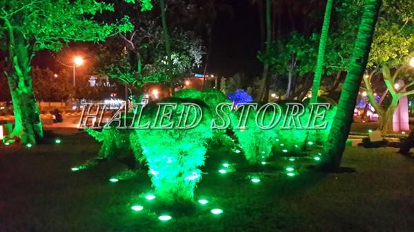 Ứng dụng chiếu sáng của đèn LED chiếu cây HLDAOG1-36- RGB