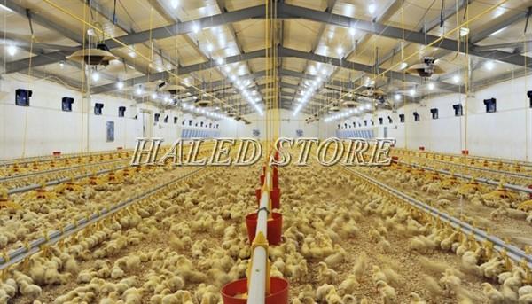 Ứng dụng của đèn LED nhà xưởng HLDAB5-150
