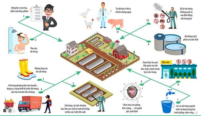 Áp dụng các biện pháp phòng ngừa dịch bệnh lây lan