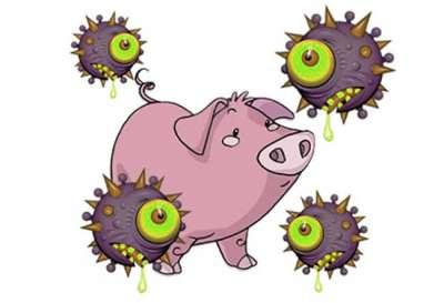 Phát hiện sớm bệnh cúm lợn - Swine influenza
