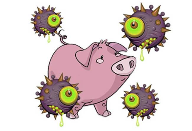 Bệnh cúm lợn do virus gây ra