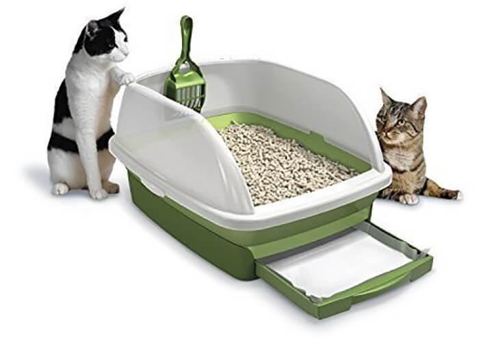 Dụng cụ chuẩn bị cho mèo đi vệ sinh