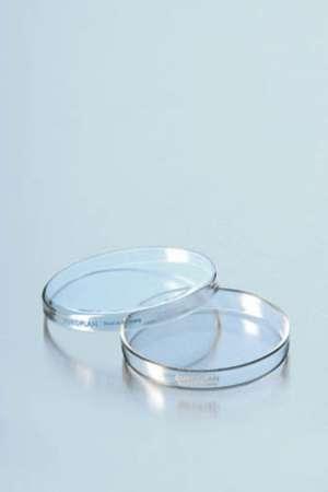 Hộp Petri thủy tinh 60x15mm Dinlab