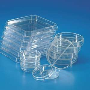 Đĩa petri nhựa 60mmKartell