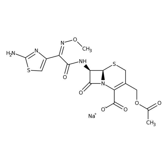 Cefotaxime sodium salt 1g Bioreagents