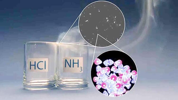 Amoniac hóa lòng phản ứng với HCl tạo ra muối amoni