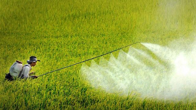 Ứng dụng của FeCl3 trong sản xuất thuốc trừ sâu