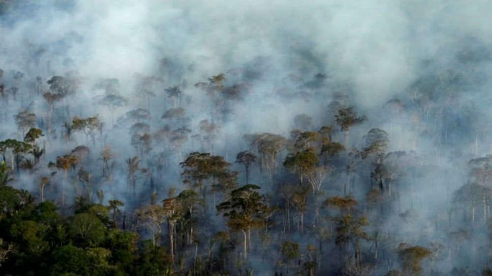 Khí CO2 là gì? CO2 có ảnh hưởng gì đến môi trường?