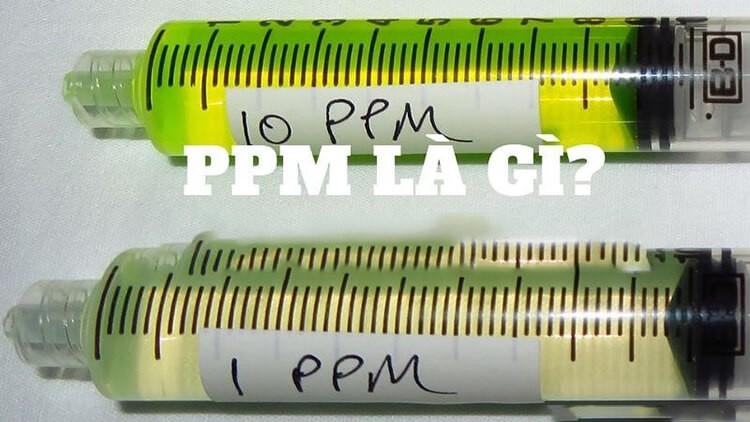 Khi nào sử dụng đơn vị ppm