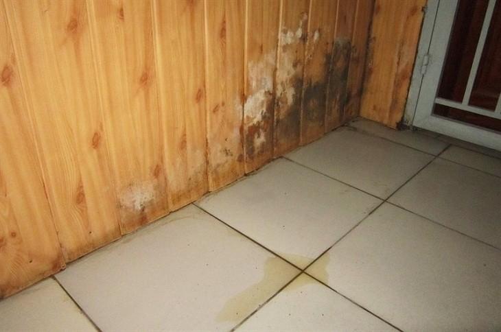Đặt tủ đông tại nơi ẩm ướt sẽ dẫn đến tình trạng bị rò rỉ điện